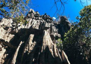 Les Tsingy de l'Ankarana
